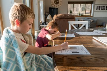 Two boys homeschooling